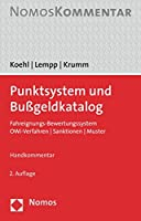 Punktsystem Und Bussgeldkatalog: Fahreignungs-bewertungssystem U Owi-verfahren U Sanktionen U Muster