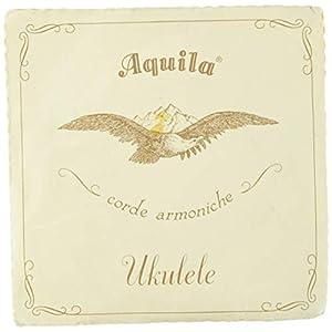 Aquila アクィーラ ウクレレ用 ナイルガ...の関連商品2