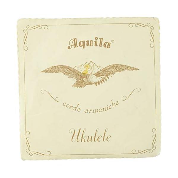 Aquila アクィーラ ウクレレ用 ナイルガッ...の商品画像