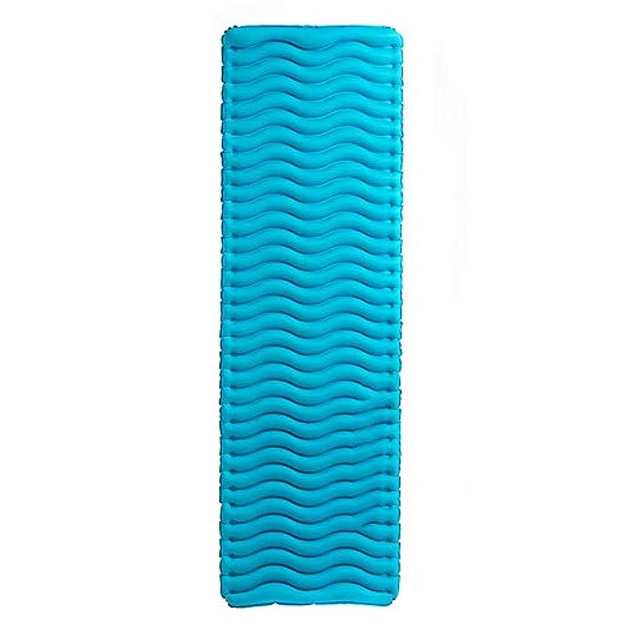 余分な論争的開梱寝袋アウトドアアウトドアブッシュスリーシーズンキャンプ 厚いとポータブルシングルダブル超軽量キャンプテントインフレータブルクッション肌にやさしい防湿性と通気性 で利用できる単一の二重色 (色 : 青)