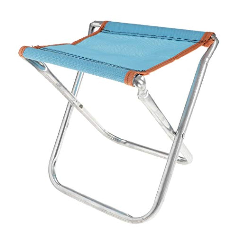 充電反応するアグネスグレイPerfeclan 軽量 ポータブルスツール 折りたたみ椅子 キャンプ 釣り用 全2サイズ