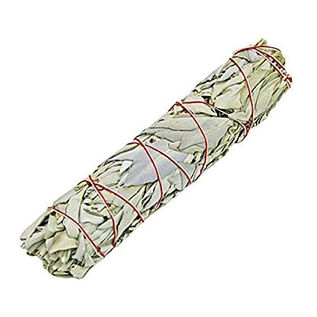 若者効能報奨金Indian White Sage Smudge Sticks, 6 Inch Long, Home Cleansing, Blessing, Manifesting, 1 Sticks (100 Grams)
