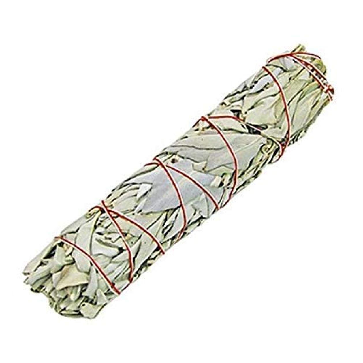 影響するやりがいのある光電Indian White Sage Smudge Sticks, 6 Inch Long, Home Cleansing, Blessing, Manifesting, 1 Sticks (100 Grams)