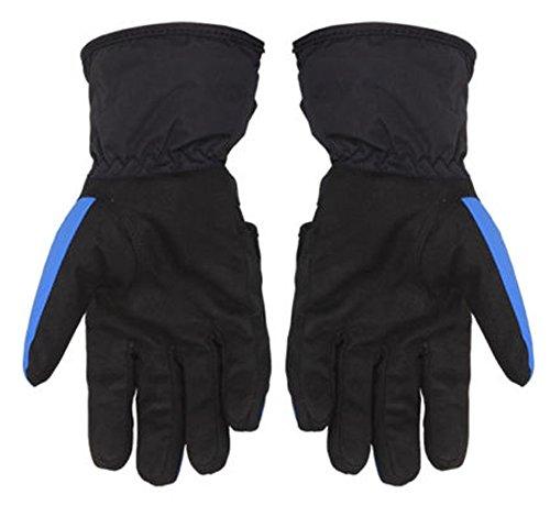 防水オートバイの手袋フル指手袋Motorcycle Biker Riding PowersportsアウトドアRacingハードプラスチックKnuckle X-Large ブルー FXC079