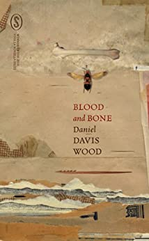 BLOOD AND BONE by [Davis Wood, Daniel]