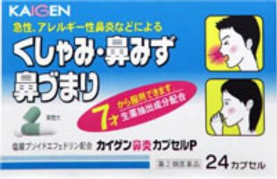 (医薬品画像)鼻炎カプセルA
