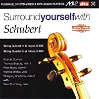 Surround Yourself With Schubert