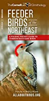 Feeder Birds of the Northeast: A Folding Pocket Guide to Common Backyard Birds (All About Birds Pocket Guide Series)