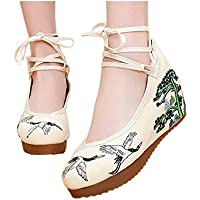 AvaCostume Women's Embroidery Rubber Sole Strappy Wedges Party Shoes