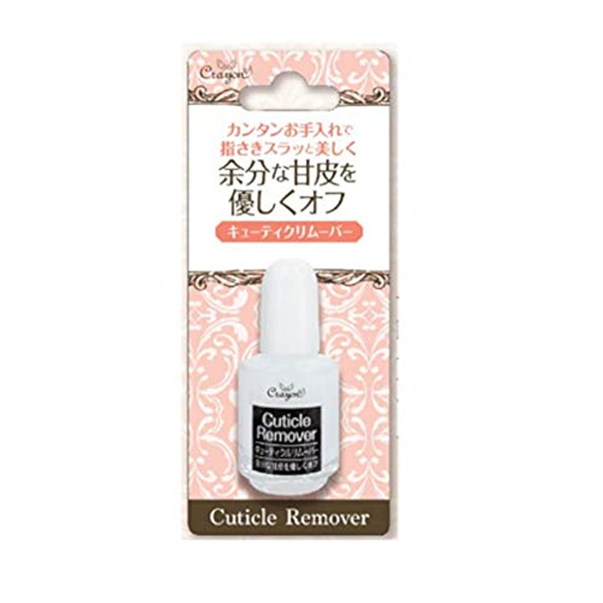お酢火曜日三角クレヨン キューティクルリムーバーW CNCA1801