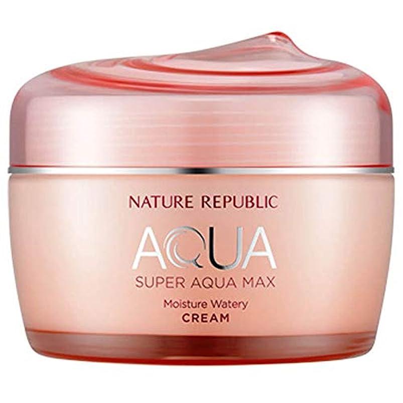 ベックス港調整韓国化粧品NATURE REPUBLICスーパーアクアマックスモイスチャークリーム80ミリリットル水っぽいフェイスクリーム寧アンチリンクルハイド