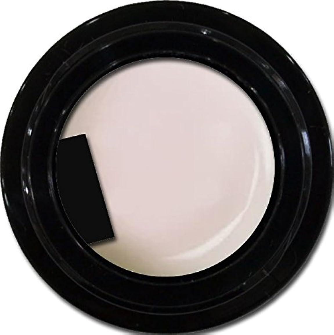 以来食事民主主義カラージェル enchant gel color gel S002 Sheer Snow 3g/ エンチャントジェル カラージェル S002シアースノウ 3グラム