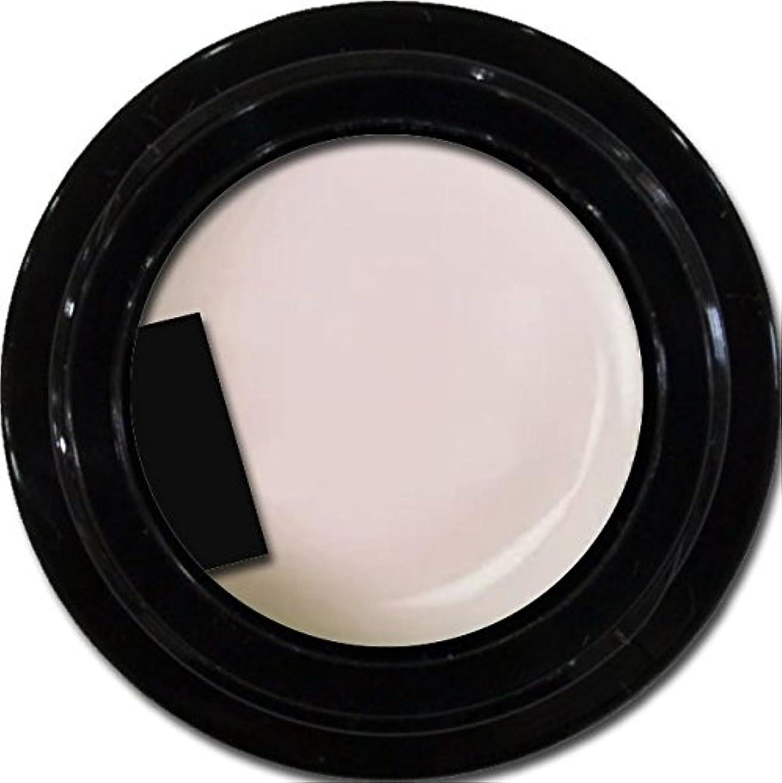 困惑請求書セクタカラージェル enchant gel color gel S002 Sheer Snow 3g/ エンチャントジェル カラージェル S002シアースノウ 3グラム