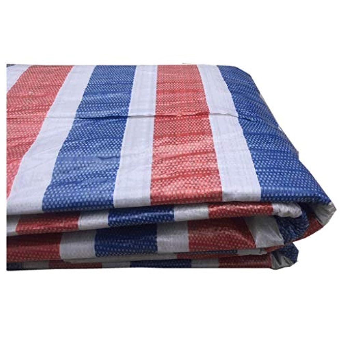 買い手いたずらな差し引くプラスチック布カラー布ターポリン装飾ターポリンカラーストリップ布花ターポリンシェード布屋外三色紙レイン布 (Color : Three colors, Size : 3x30m)