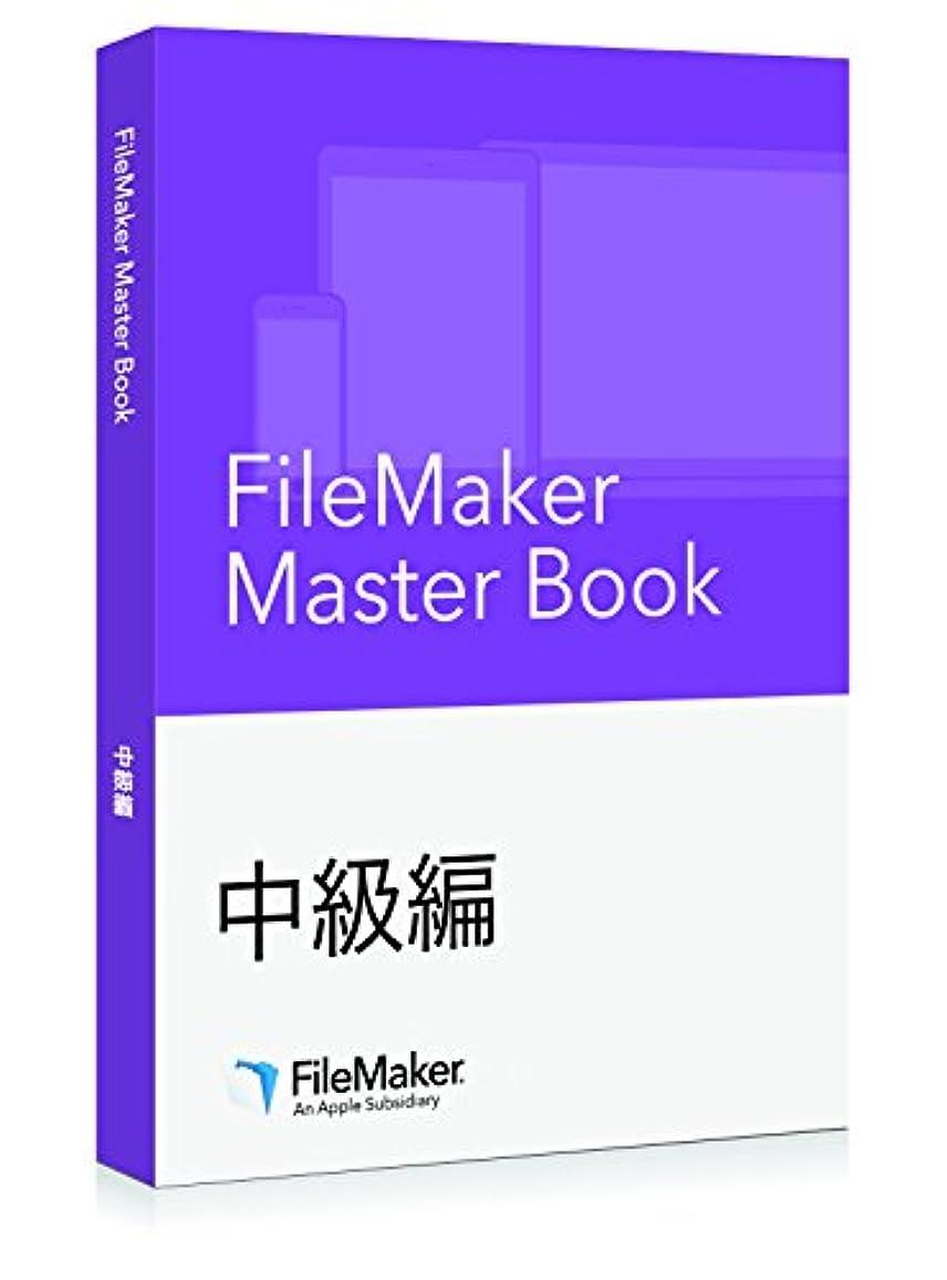 削減ビジョンアームストロングファイルメーカー FileMaker Master Book 中級編