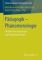 Paedagogik - Phaenomenologie: Verhaeltnisbestimmungen und Herausforderungen (Phaenomenologische  Erziehungswissenschaft)