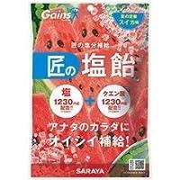 SARAYA 匠の塩飴 スイカ 味 100g×3袋