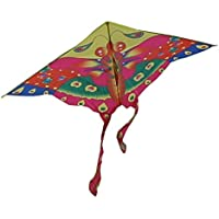 RoarSoar Uttarayan Child or Adult Easy to Fly Kite 59/Large One Color [並行輸入品]