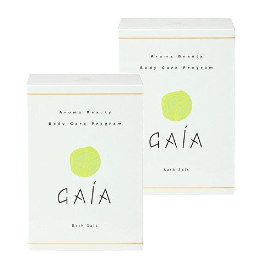 サービス続ける多くの危険がある状況GAIAバスソルト小袋30g×10包