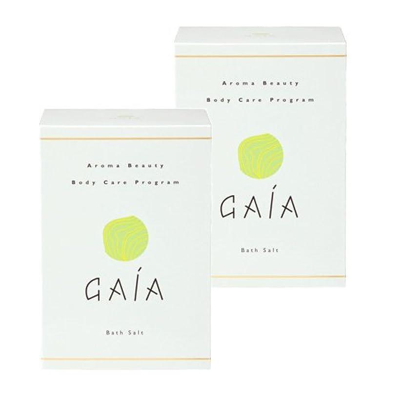 インフラ意外知覚GAIAバスソルト小袋30g×10包