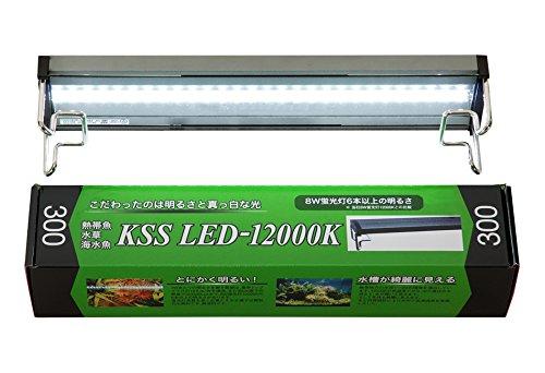 KSS(ケイエスエス) LED-12000K 300