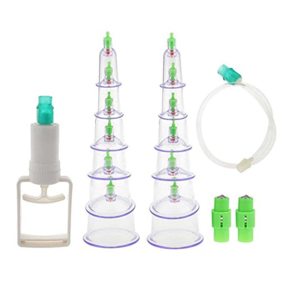うぬぼれた性別リスナーカッピング 吸い玉 12個セット 付属品付き 真空 セラピーセット マッサージ 血液循環 組織再生