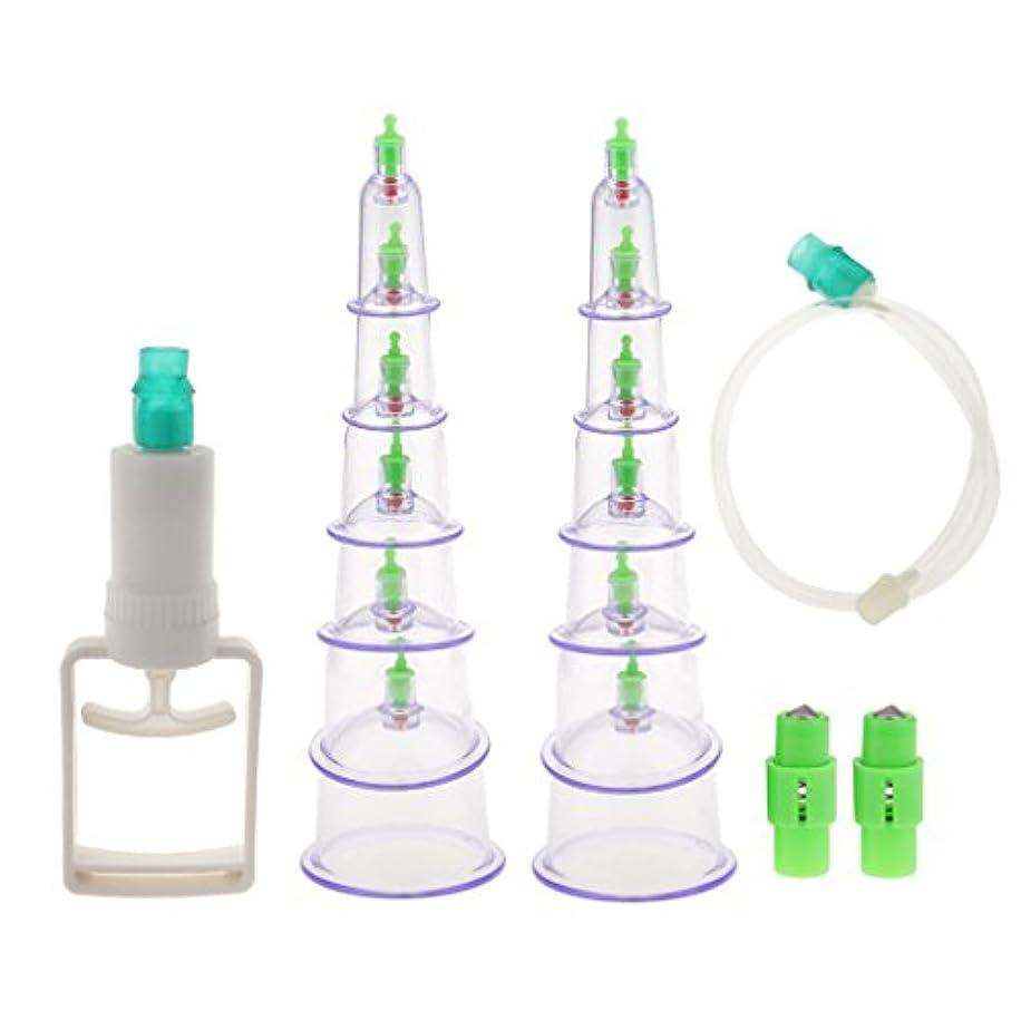 飾る可動取り替えるカッピング 吸い玉 12個セット 付属品付き 真空 セラピーセット マッサージ 血液循環 組織再生