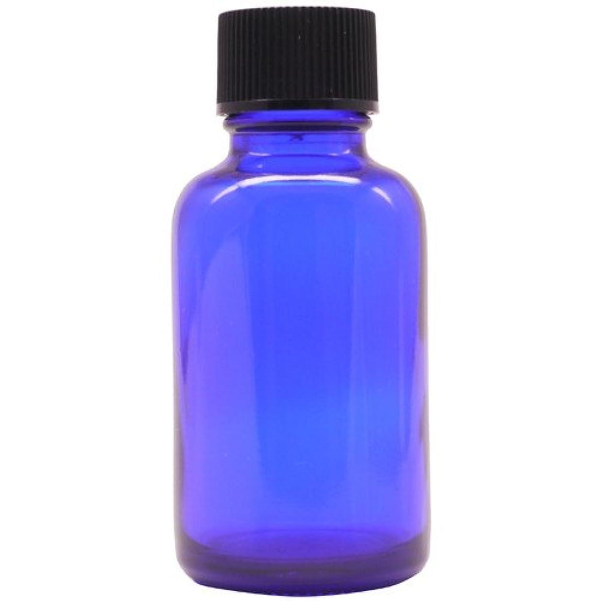 国内の行商狼アロマアンドライフ (D)ブルー瓶中止栓30ml 3本セット