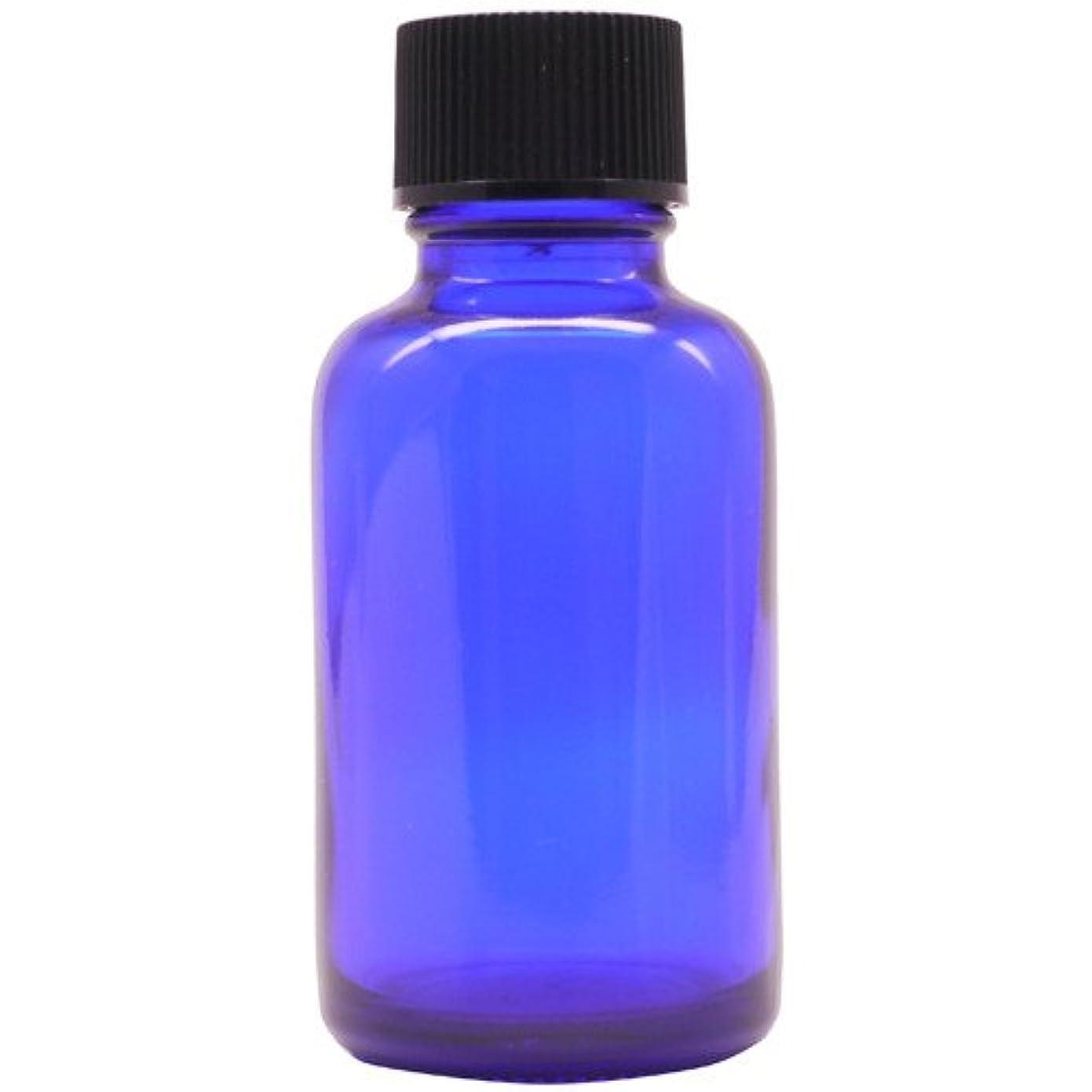 閲覧するひまわりノイズアロマアンドライフ (D)ブルー瓶ドロップ栓30ml 3本セット