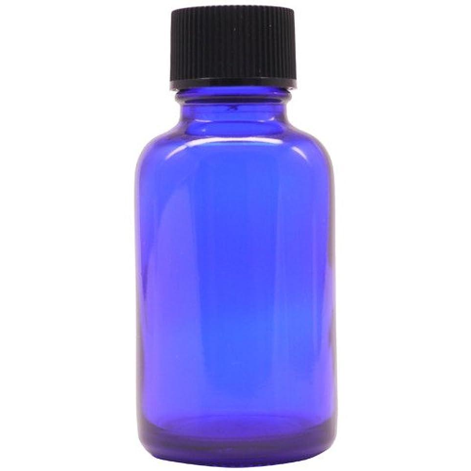 流行している男らしい申請者アロマアンドライフ (D)ブルー瓶中止栓30ml 3本セット