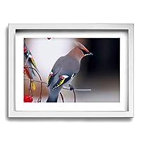 My Life 春の鳥 木製の枠 キャンバス絵画 アートパネル インテリアアート 家の壁の装飾画 壁飾り 壁ポスター おしゃれ 壁アート写真の装飾画の壁画 - 白黒