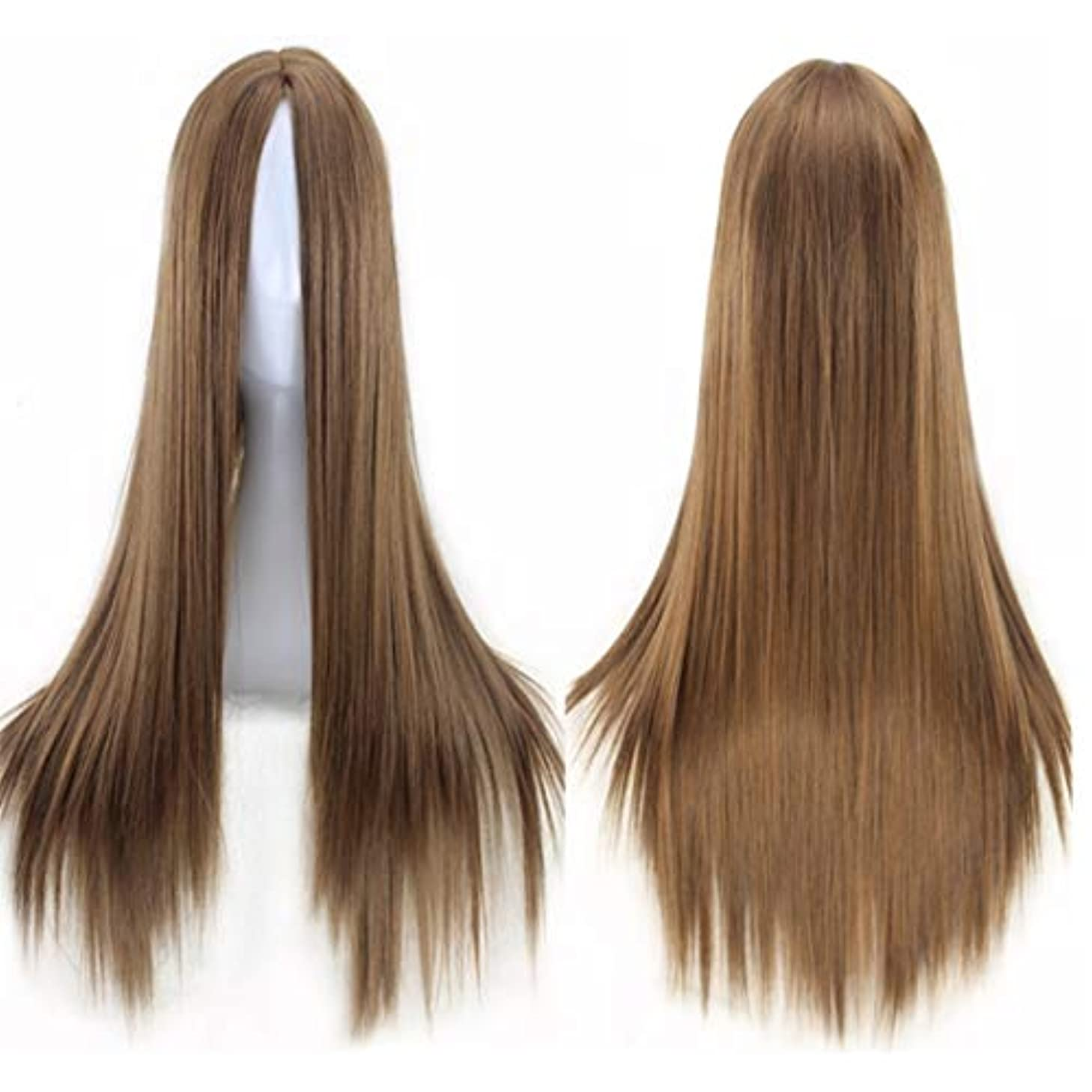 発見強調発見Kerwinner ミドルの前髪のかつら耐熱ウィッグ65 cmのロングストレートウィッグの人々のためのパーティーパフォーマンスカラーウィッグ(マルチカラー) (Color : Light brown)