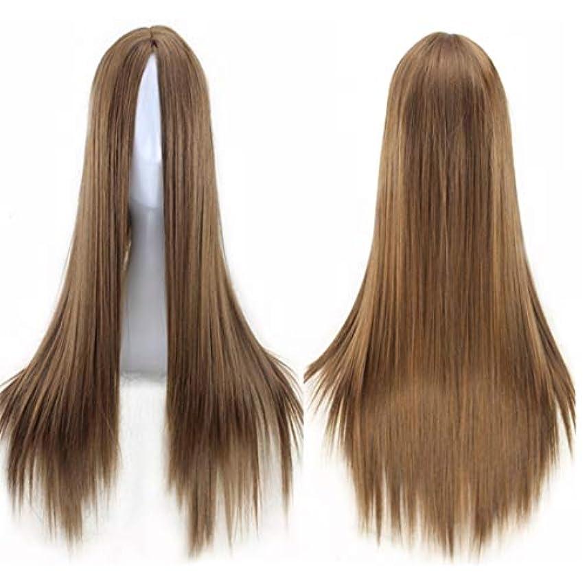 金属格納境界Kerwinner ミドルの前髪のかつら耐熱ウィッグ65 cmのロングストレートウィッグの人々のためのパーティーパフォーマンスカラーウィッグ(マルチカラー) (Color : Light brown)
