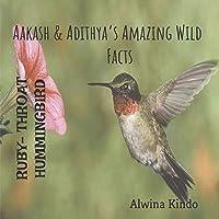 RUBY- THROATED HUMMINGBIRD Aakash & Adithya's Amazing Wild Facts