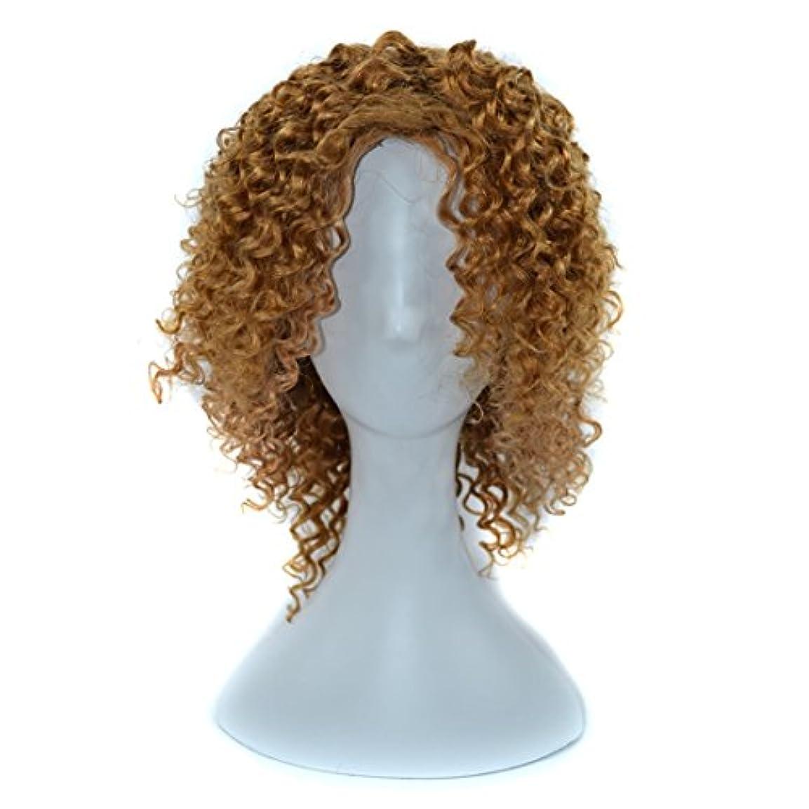 煩わしい勢い免除YOUQIU 傾斜前髪髪を持つ女性黒浮き、赤やライトブラウンディープカールウィッグはウィッグセットのウィッグを染めすることができないために14インチ本物の人間の髪の毛 (色 : 淡い茶色)