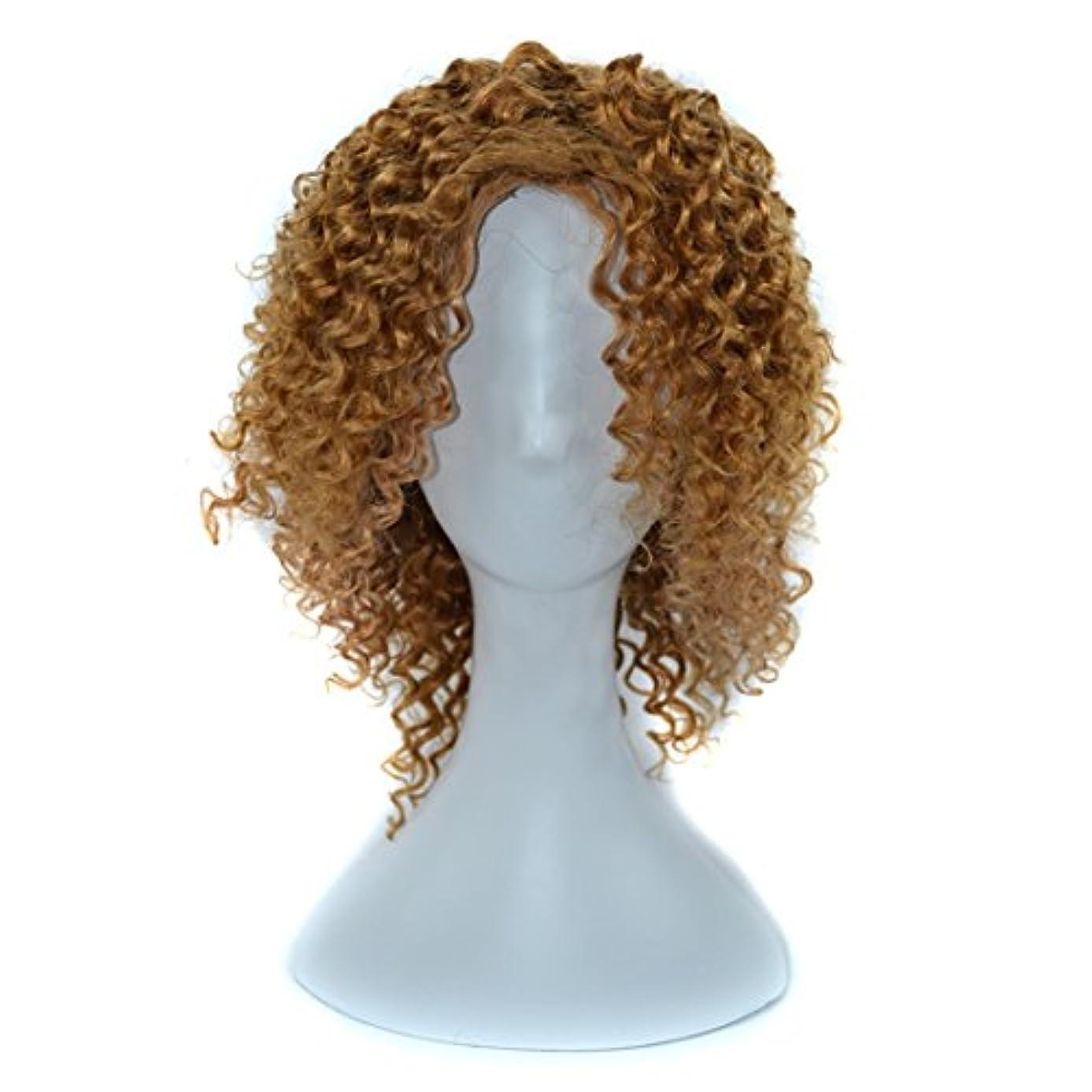 憂慮すべきハンマー重荷YOUQIU 傾斜前髪髪を持つ女性黒浮き、赤やライトブラウンディープカールウィッグはウィッグセットのウィッグを染めすることができないために14インチ本物の人間の髪の毛 (色 : 淡い茶色)