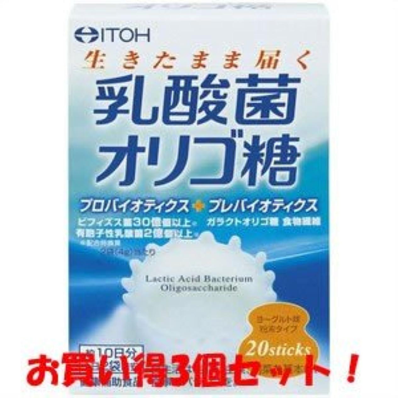 海外で四しないでください【井藤漢方製薬】乳酸菌オリゴ糖 40g(2g×20スティック)(お買い得3個セット)