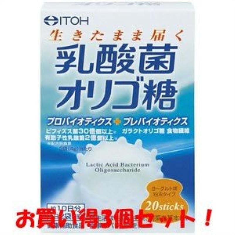 基礎理論請うホラー【井藤漢方製薬】乳酸菌オリゴ糖 40g(2g×20スティック)(お買い得3個セット)