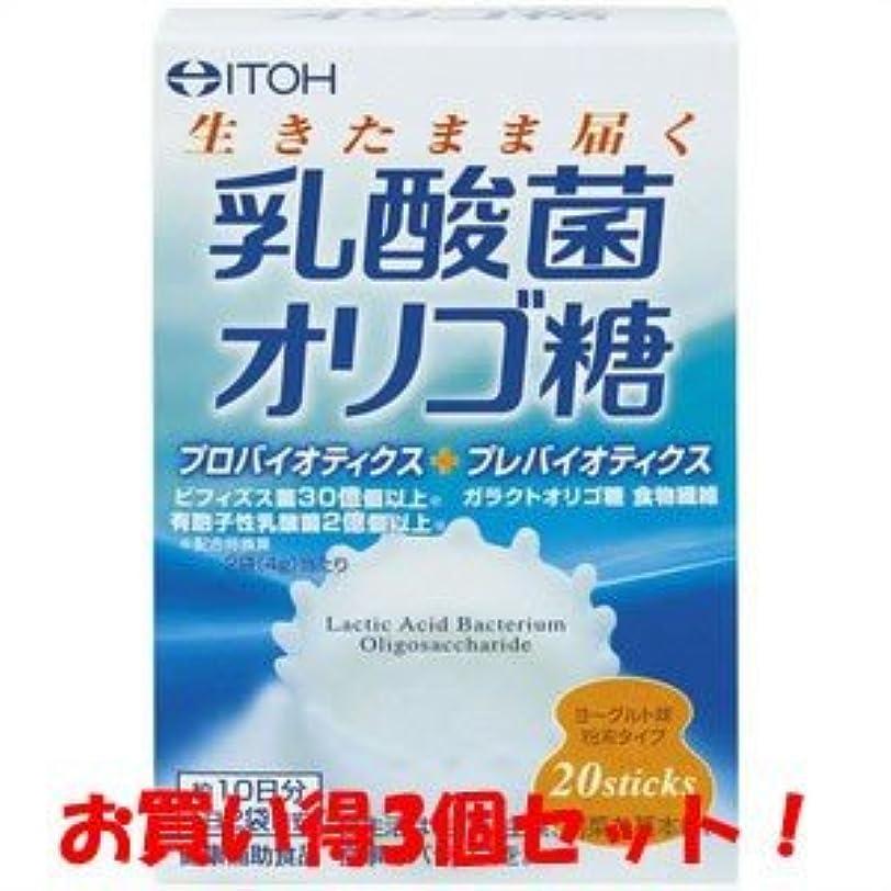 キャンドル残り物フォーム【井藤漢方製薬】乳酸菌オリゴ糖 40g(2g×20スティック)(お買い得3個セット)