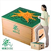 ≪楽らく健康BOX≫〔NHKも注目〕発明主婦 小川信子のアイデア品/踏み台昇降・スローステップ・有酸素運動