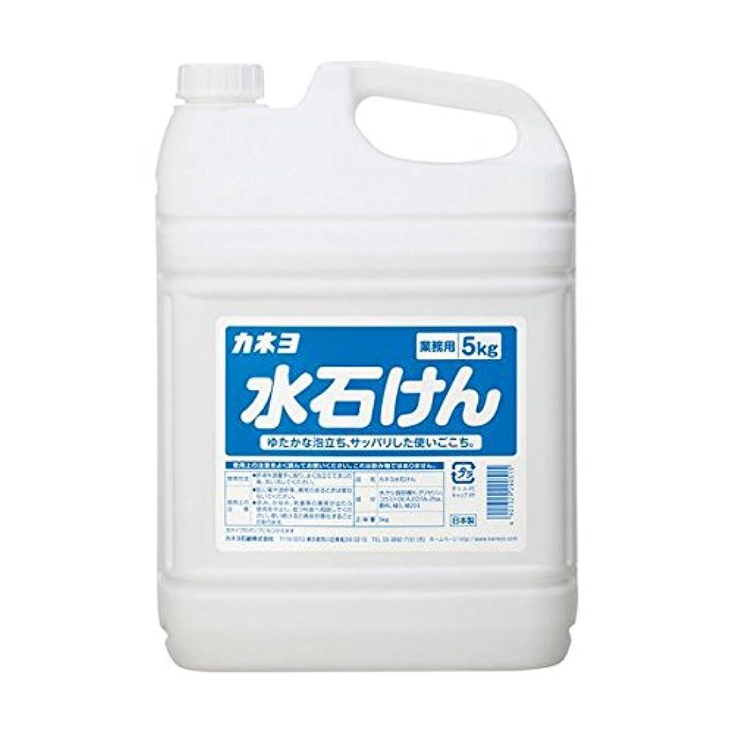 テロリスト征服者ディスク【まとめ買い】カネヨ水石けん5kg 5kg ×2セット