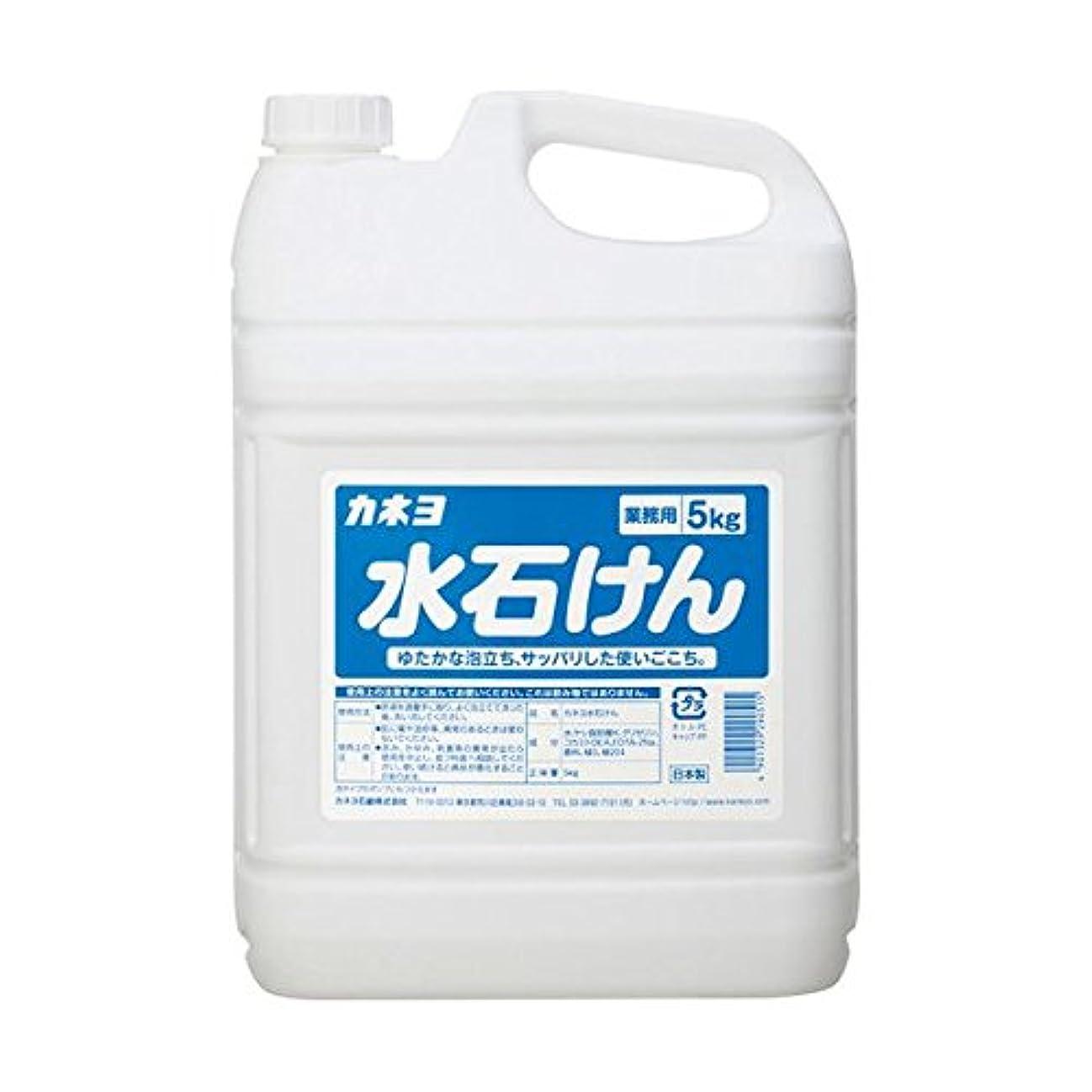 肉モザイク一次【まとめ買い】カネヨ水石けん5kg 5kg ×2セット