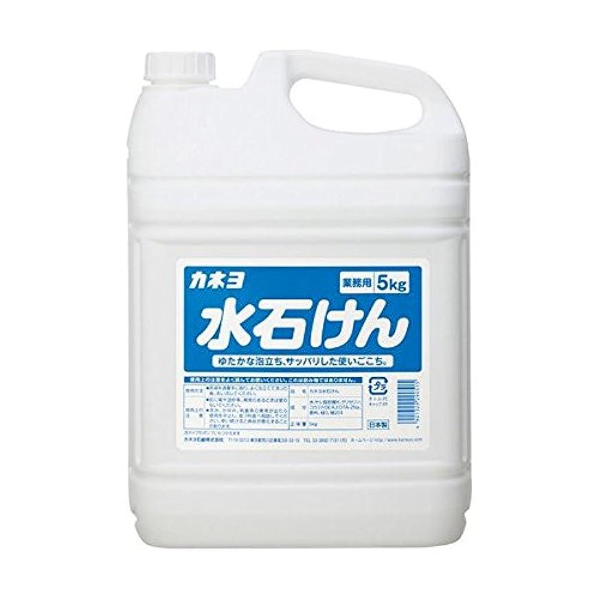 生物学改善する補充【まとめ買い】カネヨ水石けん5kg 5kg ×2セット