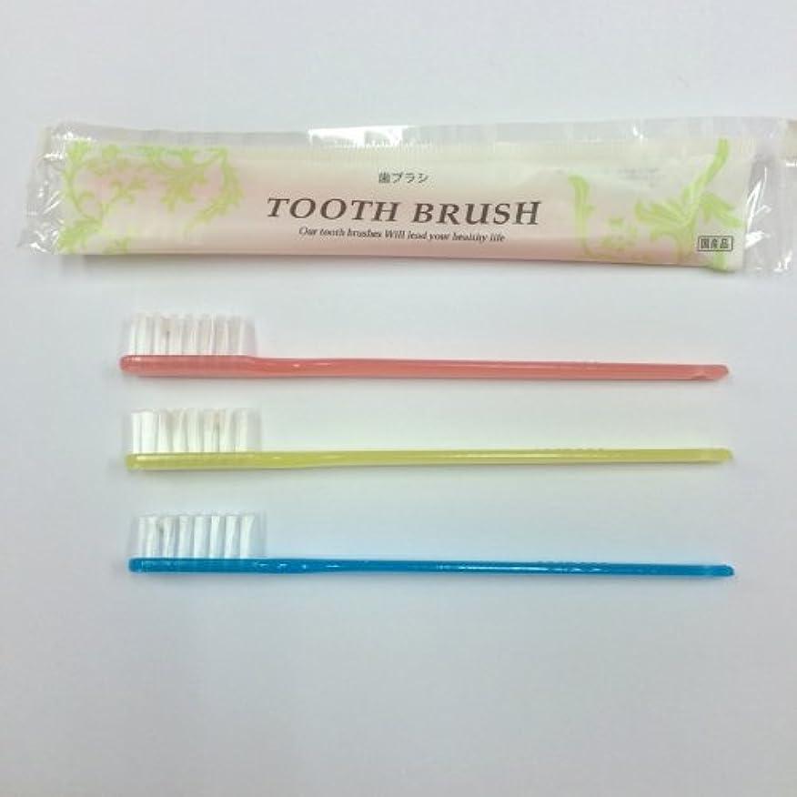 仲良し壮大な闘争インスタント歯ブラシ 3色アソート(ピンク?ブルー?イエロー) 200本
