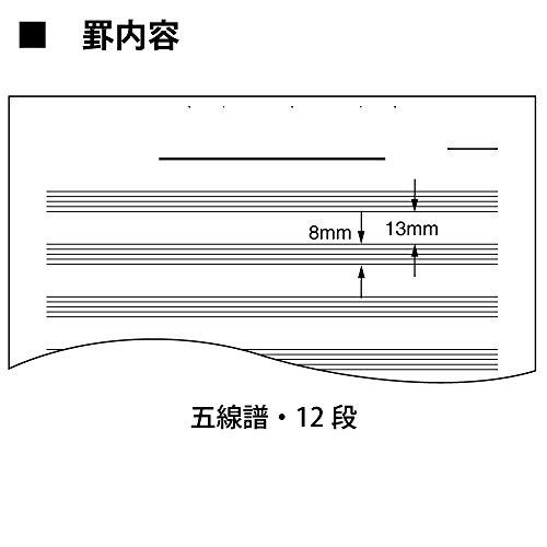 コクヨ ノート キャンパス 音楽帳 レポートタイプ A4 5線譜12段 30枚 オン-70N