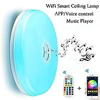 WiFiスマートシーリングランプ WiFi+Bluetooth Speaker+Remote Controller マルチカラー