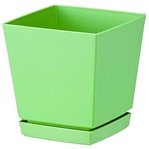 大和プラスチック クエンチローポット(鉢皿付)...の関連商品6