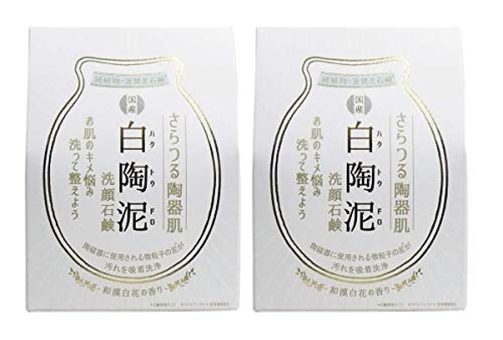 病んでいる否認する航海ペリカン石鹸 白陶泥洗顔石鹸 100g×2個セット