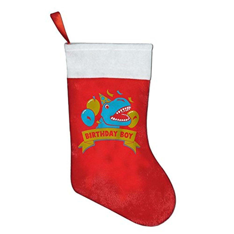 クリスマスホリデーストッキングカスタムGift for Birthday Boy恐竜ラプター独特デザイン One Size ブラック ZJ-wz-18138032