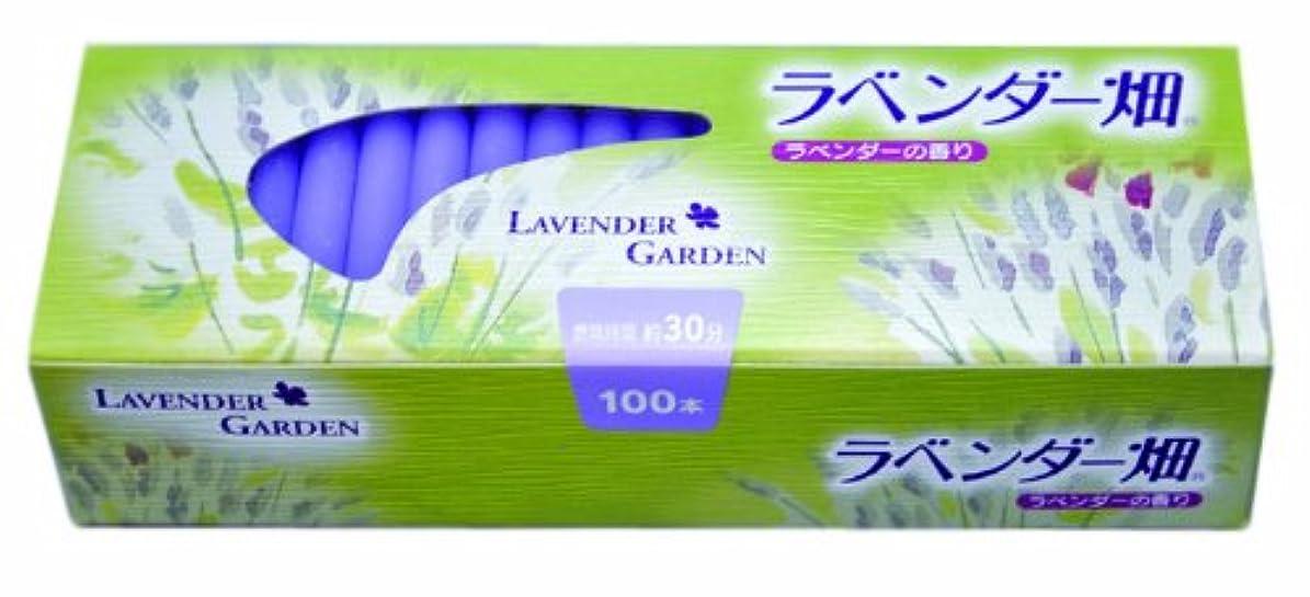 かごサワー半球キャンドル ラベンダー畑30分 ラベンダーの香り